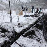 野立て太陽光発電所のケーブル埋設